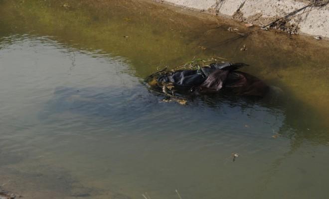 Odun Toplarken Sulama Kanalına Düşen Yaşlı Adam Öldü