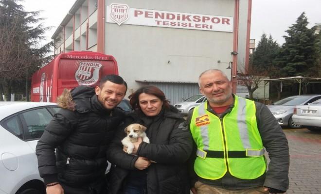 Zavallı Köpek Ve Yavrularına Eren Derdiyok Sahip Çıktı