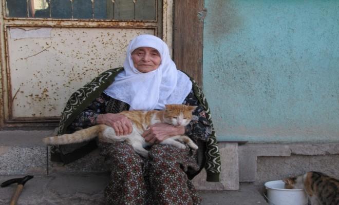 60 Yıldır Sokak Kedilerine Bakıyor