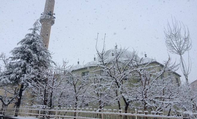Bitliste Nisan Ayında Lapa Lapa Kar Yağdı
