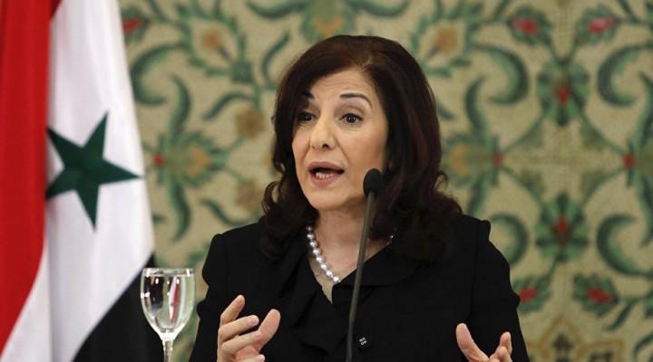 Esad'ın danışmanından haddini aşan 'Türkiye' açıklaması
