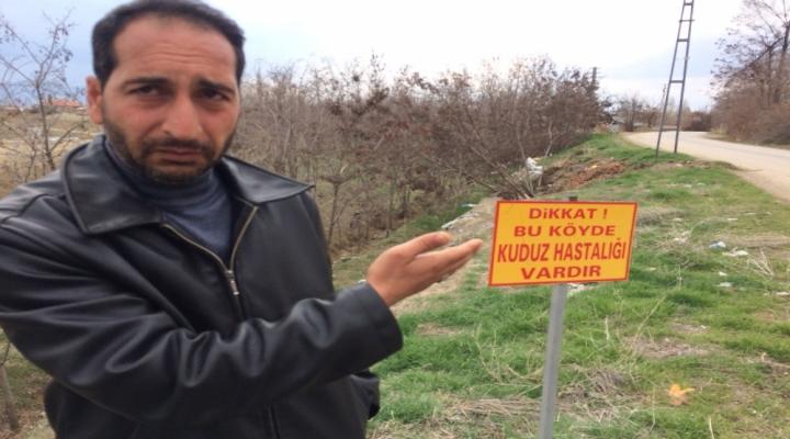 Elazığda Bir Köyde Kuduz Karantinası