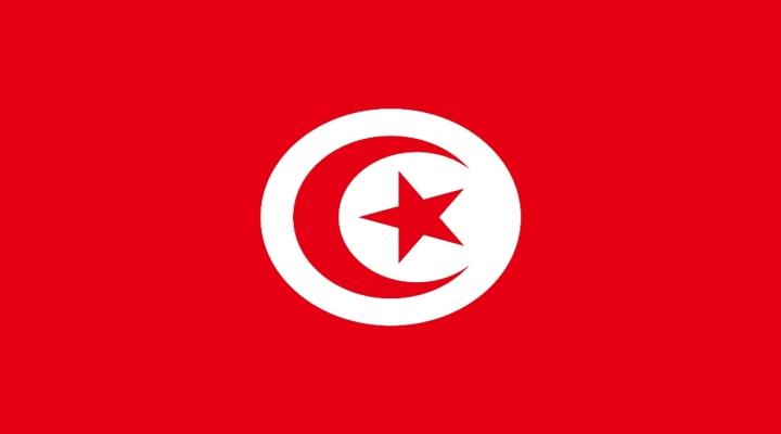 Türkçe Tunusta Seçmeli Yabancı Dil Oldu