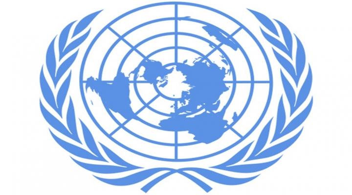 Suriyedeki Kamplarda Filistinli Mülteci Sayısı Azaldı