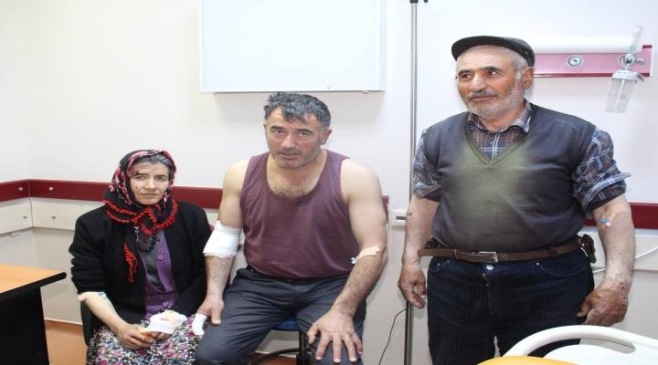 Kurt Köylülere Saldırdı: 4 Yaralı