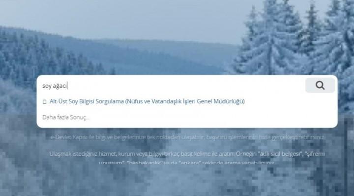 e-Devlet soyağacı sorgulama ekranı! Soyağacı nasıl sorgulanır