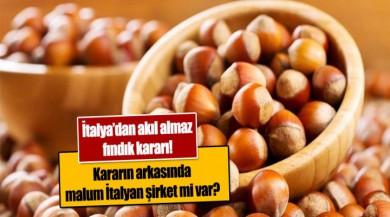 İtalya'dan akıl almaz fındık kararı! Türk fındığı