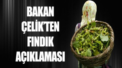 Bakan Çelik'ten fındık açıklaması: Fındık bizim gözbebeğimiz
