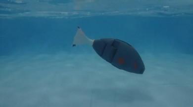 Askeri amaçlı kullanılabilecek 'Robot Balık' üretildi