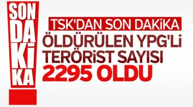 Etkisiz hale getirilen terörist sayısı 2295 oldu